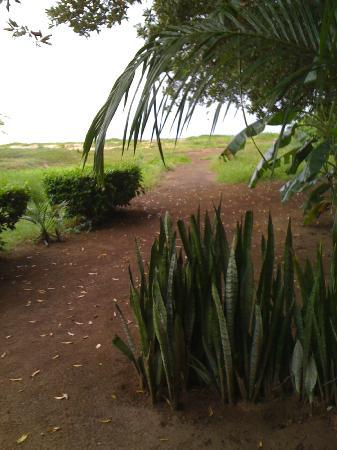 Hotel La Laguna del cocodrilo: HOTEL TO BEACH