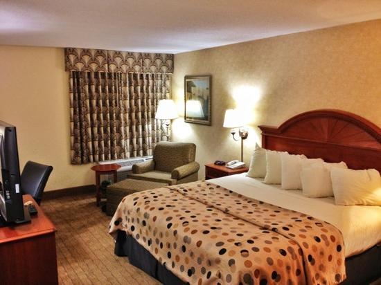 Howard Johnson Evansville East : King Room