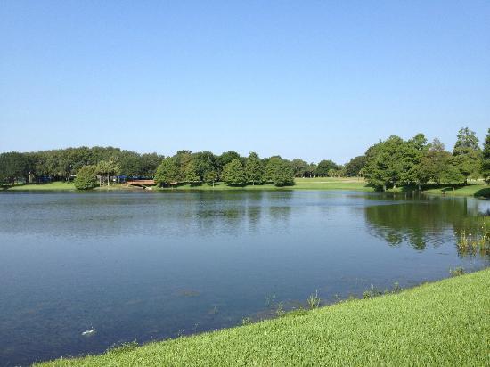 Villas of Grand Cypress : Sur le parcours de jogging