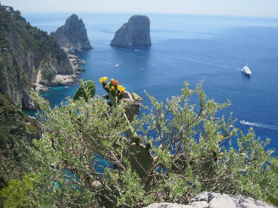 Capri day Tours: Capri-3