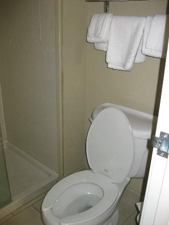 Staybridge Suites Columbia: toilet and shower area