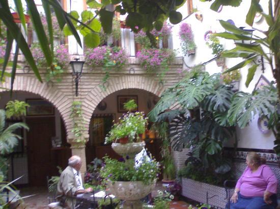 Pensión los Arcos: patio