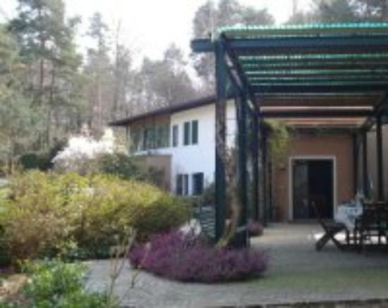 Il Giardino delle Cince: Patio e ingresso abitazione