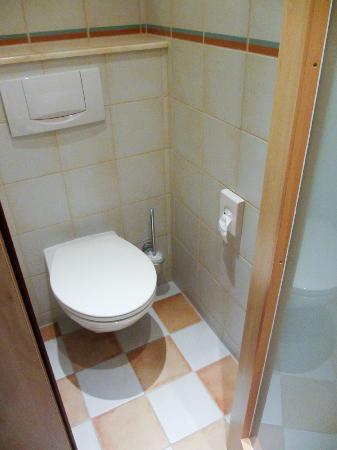 SternHotel Bonn : Toilet