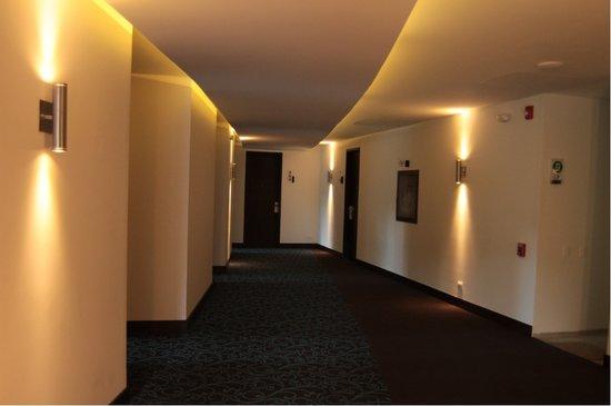 Morrison 114 Hotel: Hallway - 2 elevators