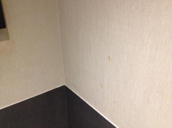 Crowne Plaza Lancaster Toluca: Dirty walls room 244