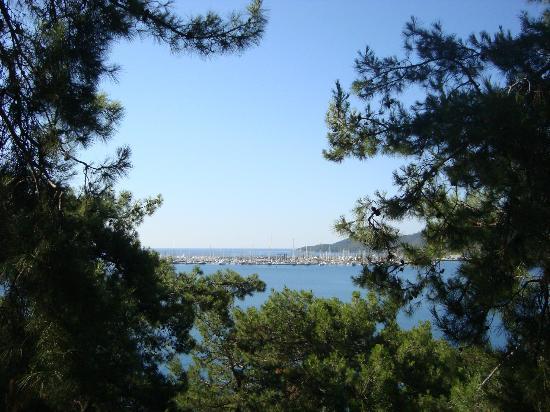 Club Nimara Beach Resort : View from balcony