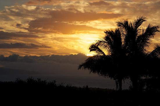 Maui Tradewinds: Sunset from the patio