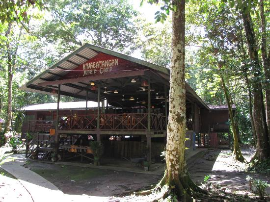 Kinabatangan Jungle Camp: The main hall, where all meals are served