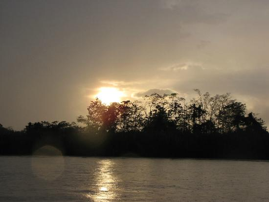 Kinabatangan Jungle Camp: Sunset on the Kinabatangan River