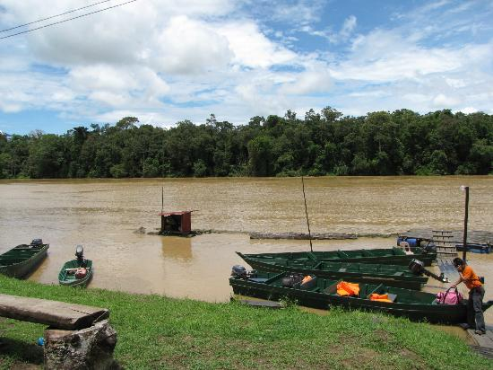 Kinabatangan Jungle Camp: KJC's dock on the river, a short walk from the camp area