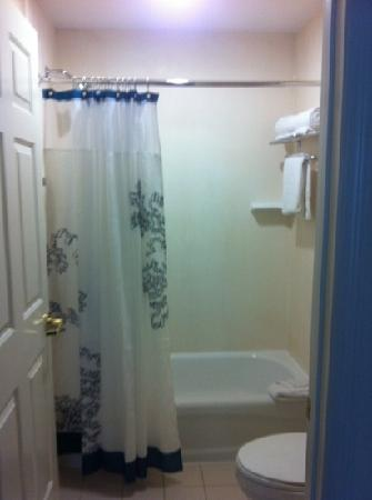Residence Inn Orlando Convention Center: bathroom