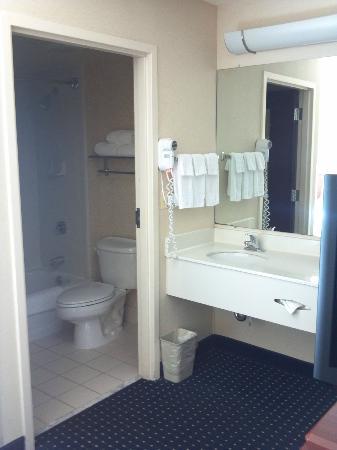 SpringHill Suites Chicago Elmhurst/Oakbrook Area: Bathroom area
