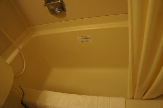 APA Hotel Fukuoka Yukuhashi Ekimae: Bathtub