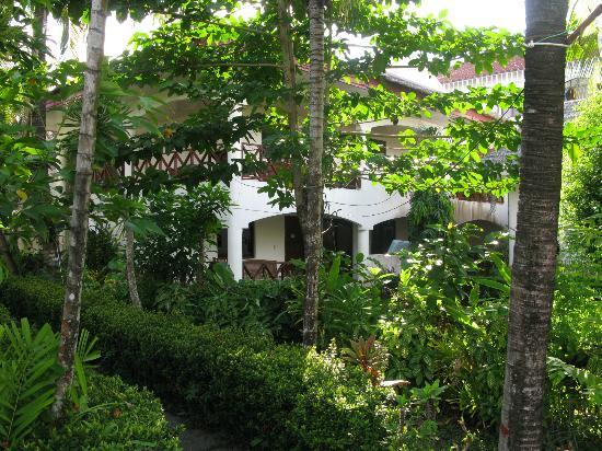 Nirvana Beach Resort: lush backyard