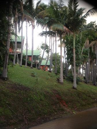 Paradise Palms: 2 Bedroom Bures with Panoramic Views