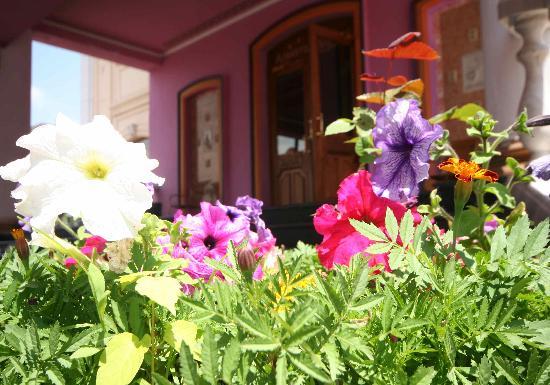 Almaty-Sapar : info@saparhotels.com