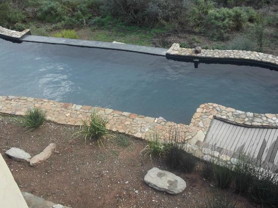 Pool at White Lion Lodge