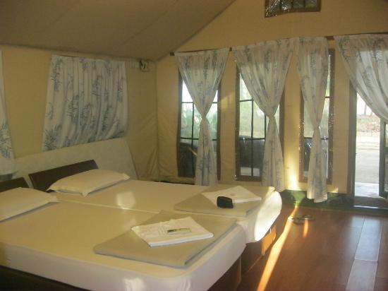 Sai Vishram Beach Resort: Our tent from inside