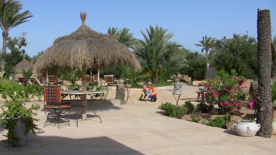 Menzel El Karam: terrain