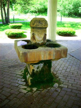 Congress Park: Fountain