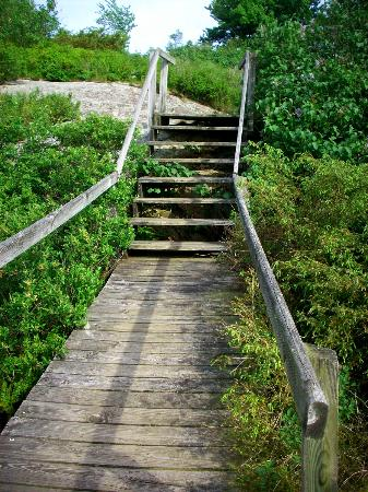 Keewaydin State Park campground: Stairs
