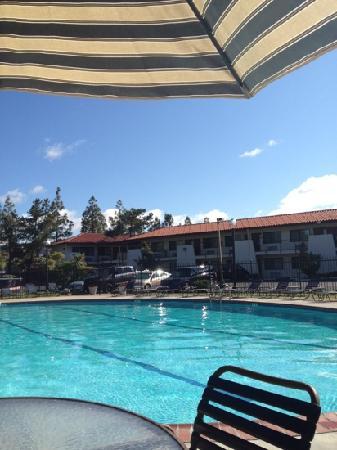 Sandman Hotel: pool