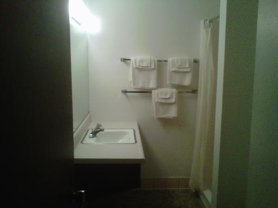 Shaffer Park Resort: Newer Bath