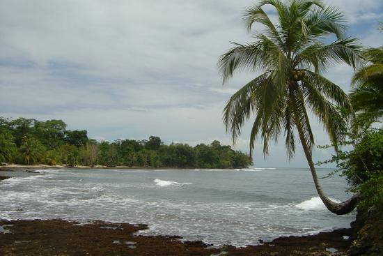 Hotel Tierra Verde: View of the surf to the left of the hotel
