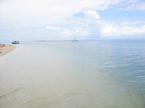 Hotel Tierra Verde: Starfish beach