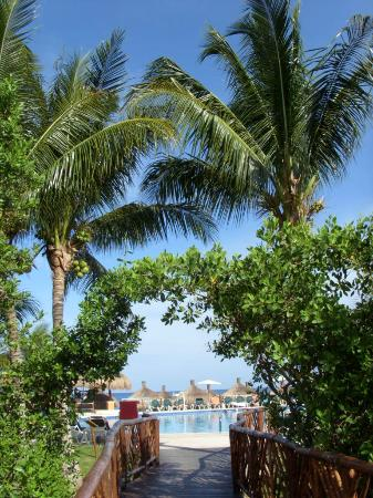 Royal Level at Occidental Cozumel: Looking toward beach