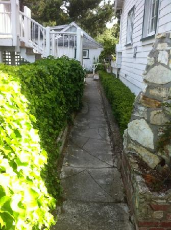 Carmel Green Lantern Inn: ivy covered walkway