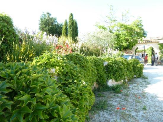 La Burliere Guest House: Beautiful garden along driveway