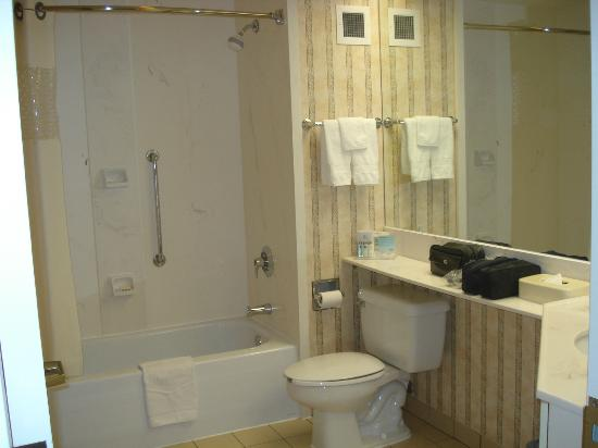 Hampton Inn by Hilton Ottawa : Bathroom