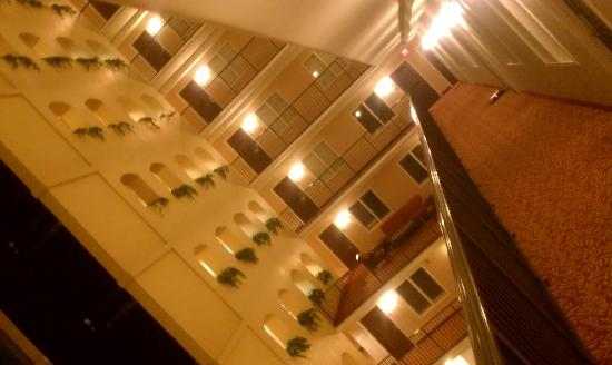 Embassy Suites by Hilton Tampa - Downtown Convention Center: Shot looking out my hotel room door.