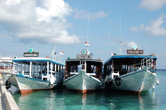 Wakatobi Dive Resort: A few of the Dive Boats at the pier