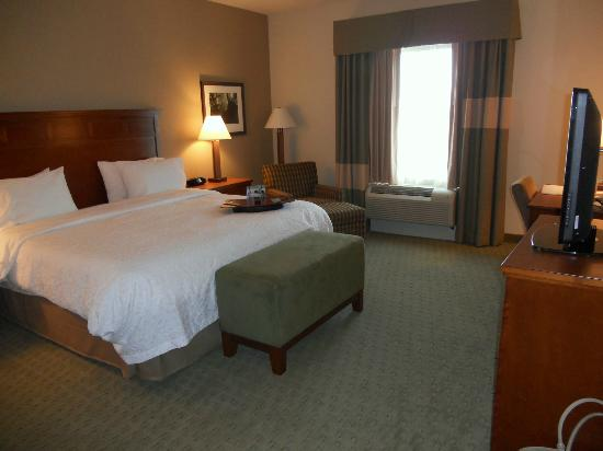 Hampton Inn & Suites Salem: King room 417