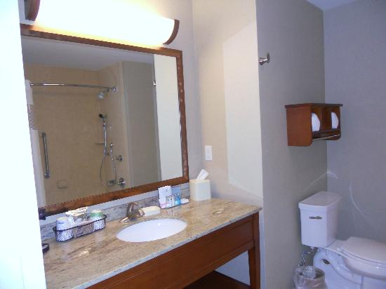 Hampton Inn & Suites Salem: Spacious bath room 417