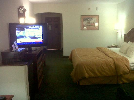 Comfort Suites Innsbrook: Room