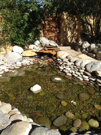 Hacienda Hot Springs Inn: pond on grounds