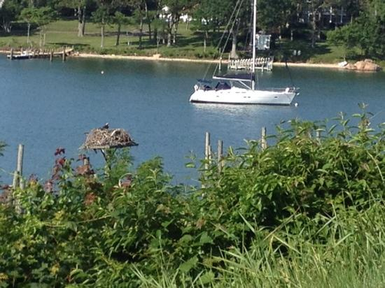 Dering Harbor Inn: view from the bluff