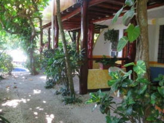 Hotel Belvedere - Playa Samara: Belvedere Rooms 1-3