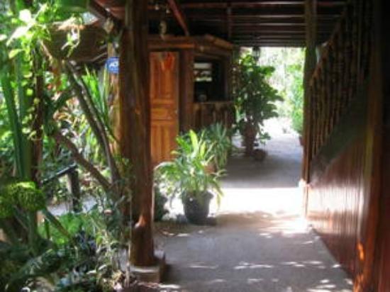 Hotel Belvedere - Playa Samara: Belvedere