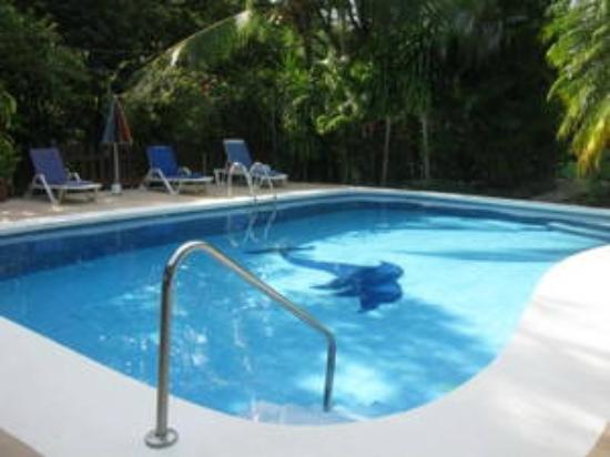 Hotel Belvedere - Playa Samara: Belvedere pool area