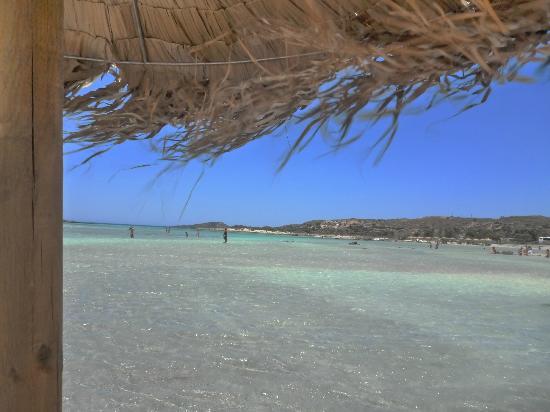 Strand von Elafonissi: Elafonisi