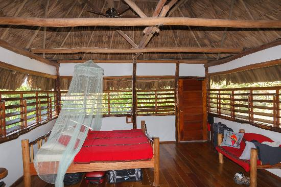 Cotton Tree Lodge : Honeymoon cottage