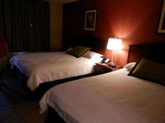 Super 8 San Diego Area  / La Mesa: nice to come to everynight after hitting the attractions