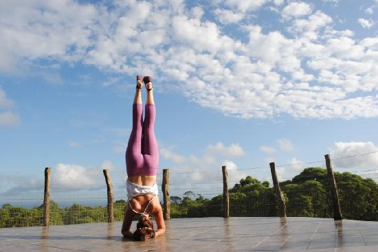 Semilla Verde Boutique Hotel: SV Group & Yoga Retreats from 2013