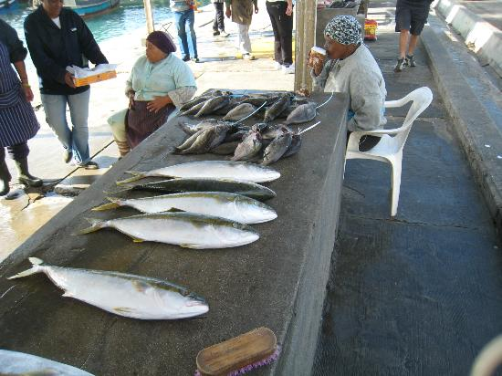 Cape Team Tours - Day Tours: Buy fresh fish