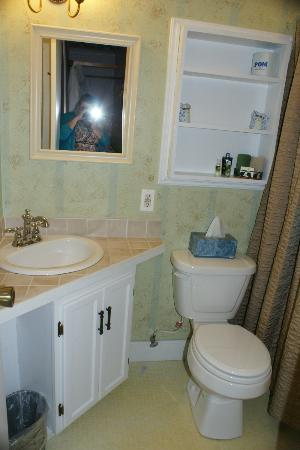 Francie's Inn: Washroom